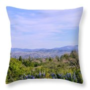 Pleasanton Preserve Throw Pillow