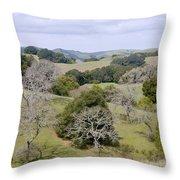 Pleasanton Ridge - North Throw Pillow