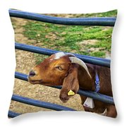 Please Exonerate Me - Billy Goat Throw Pillow