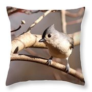 Please Leave Throw Pillow