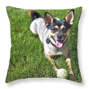 Please Play Fetch Throw Pillow