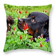 Plotting To Take Over The Farm Throw Pillow