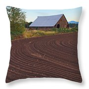 Plow Designs And A Barn Throw Pillow