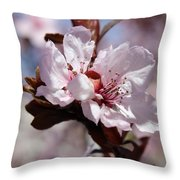 Plum Blossoms 10 Throw Pillow
