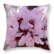 Plum Blossoms 4 Throw Pillow