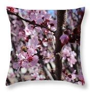Plum Blossoms 6 Throw Pillow