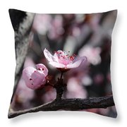 Plum Blossoms 9 Throw Pillow