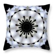 Plumeria 4 Throw Pillow