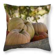Plump And Purdy Pumpkins Throw Pillow