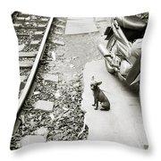 Poignancy Throw Pillow