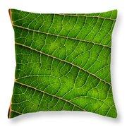 Poinsettia Leaf IIi Throw Pillow