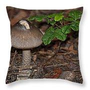Point Lobos Park  Throw Pillow