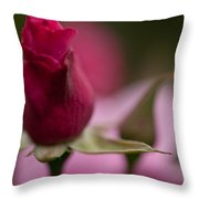 Pointedly Throw Pillow