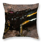 Poison Arrow Frog With Tadpoles Throw Pillow