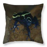 Poisonous Frog 01 Throw Pillow
