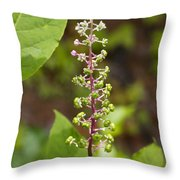 Poke Sallet Blossom Spire - Phytolacca Acinosa  Throw Pillow