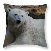Polar Bear 1 Throw Pillow