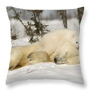 Polar Bear With Cub In Snow Throw Pillow