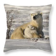 Polar Bear With Cub, Watchee Throw Pillow