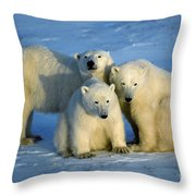 Polar Bear With Cubs Throw Pillow