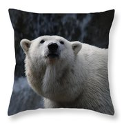 Polar Bear With Waterfall Throw Pillow