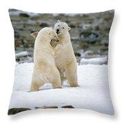 Polarbears, Churchill, Manitoba Throw Pillow