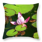 Polish Beauty Throw Pillow