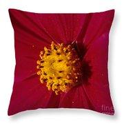 Pollen Dust Throw Pillow