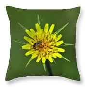 Pollination Throw Pillow