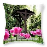 Polson Park Well Throw Pillow