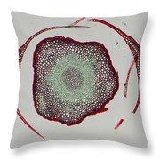 Polytrichum Throw Pillow
