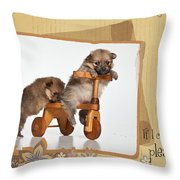 Pomeranian 1 Throw Pillow by Everet Regal