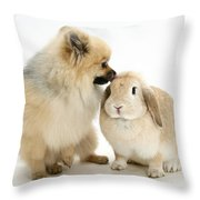 Pomeranian Dog And Rabbit Throw Pillow