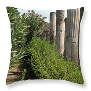Pompeii Columns 2 Throw Pillow