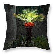 Pompeii Palm Tree Italy Throw Pillow
