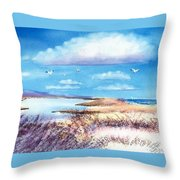 Pond At South Cape Beach Throw Pillow