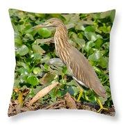 Pond Heron Throw Pillow