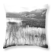 Pond In Tha North Of Ireland Throw Pillow