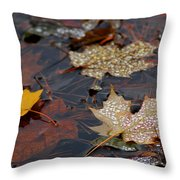 Pond Leaf Dew Drops Throw Pillow by LeeAnn McLaneGoetz McLaneGoetzStudioLLCcom