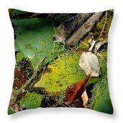 Pond Lumens Throw Pillow