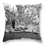 Pond Mystere Throw Pillow