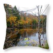 Pond On Limekiln Road Throw Pillow