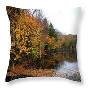 Pond On Limekiln Road II Throw Pillow