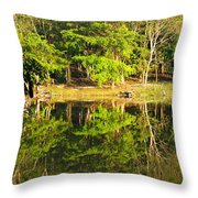 Pond Reflection Guatemala Throw Pillow
