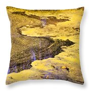 Pond Scum One Throw Pillow