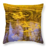 Pond Scum Two Throw Pillow