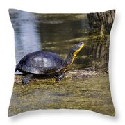 Pond Turtle Basking In The Sun Throw Pillow