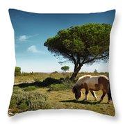 Pony Pasturing Throw Pillow