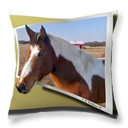 Pony Posing Throw Pillow