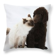 Poodle Pup And Cat Throw Pillow